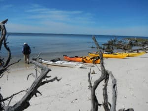 Man walking on the beach with kayaks nearby and ocean water while on Everglades Kayak and Camping Tour trip